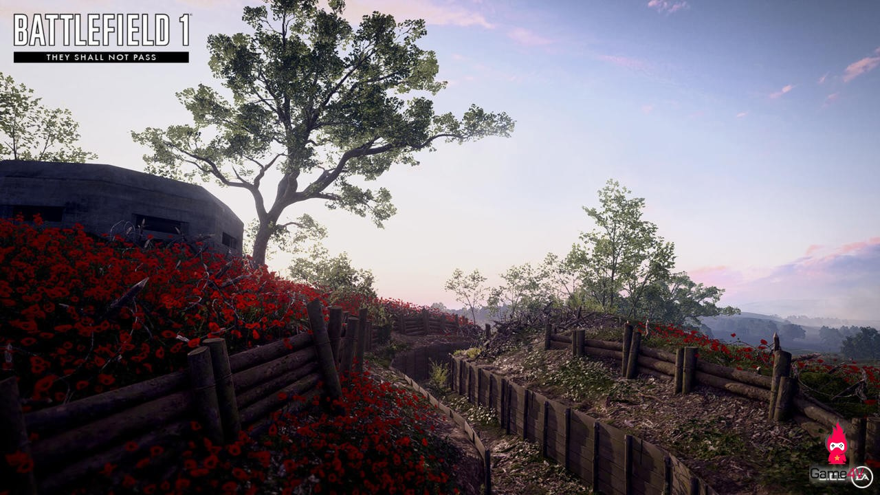bf1-expansion